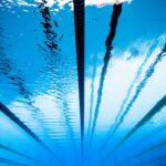 arbitro-natacion-artistica